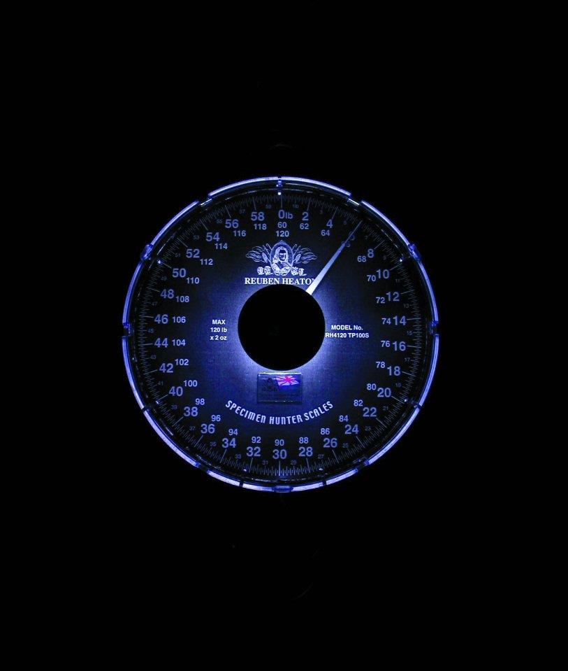 SCALE-LIGHT-1a